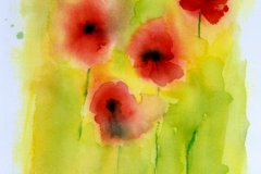 Name: Poppies | Location: Steveston, BC | Print Size: 10 x 12 | Frame Size: No Frame | Price: $100*
