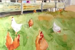 Steves Farm, Steveston, BC